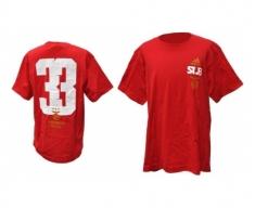 Adidas t-shirt oficial s.l.benfica campeoes nacionais 2013/2014 jr