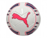 Puma ball futsal evopower