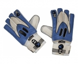 Ho titan gloves of g. reofs