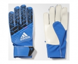 Adidas gloves of goalkeeper ace jr