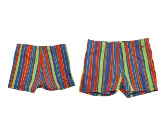 Speedo short mapi allover print
