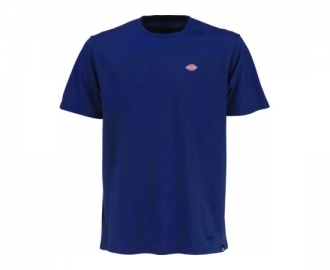 Dickies t-shirt stockdale